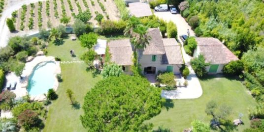 Beautiful villa with lots of charm in the middle of vineyards – Ramatuelle